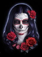 3D Picture Sugar Skull - (Earn 1 reward points on this item worth $0.25)